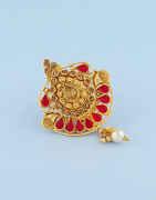 Red Colour Very Classy Designer Saree Pin