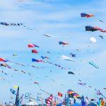 Makar Sankrant – The Festival of Kites